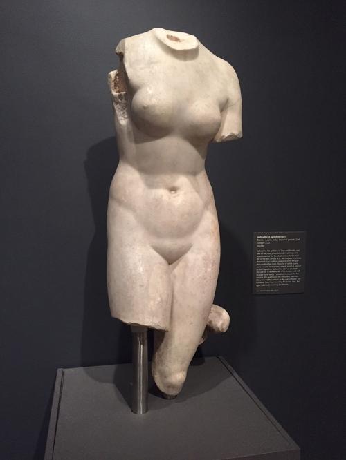 MFAAphrodite